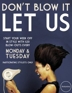 Antonino Salon $20 Blow-dry Monday and Tuesday Special